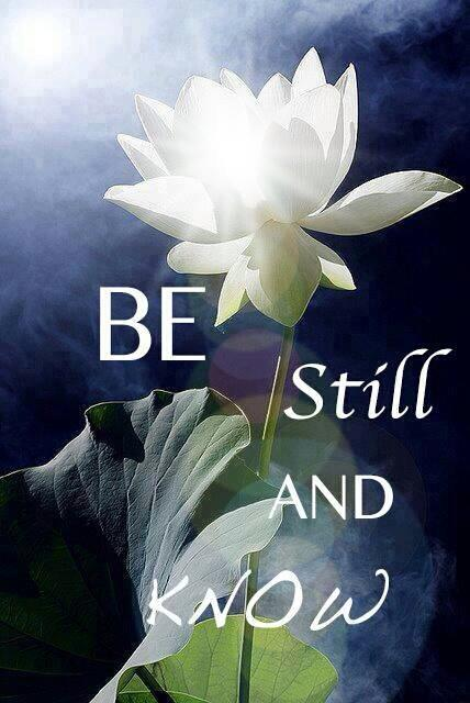 be still lotus