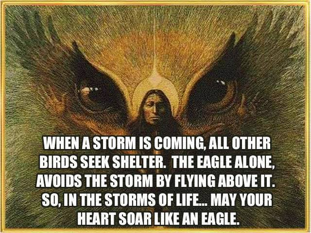 fly above storm