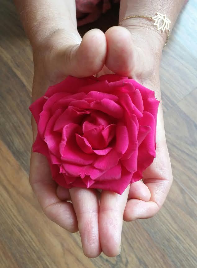 roos in handen